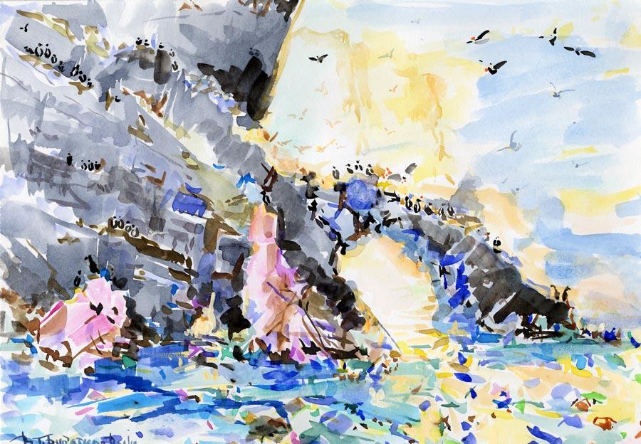 Скалы, льды и морские птицы на о.Геральд (б.а. 8*11