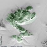 land-art,WV1,Wrangel Isl,slug